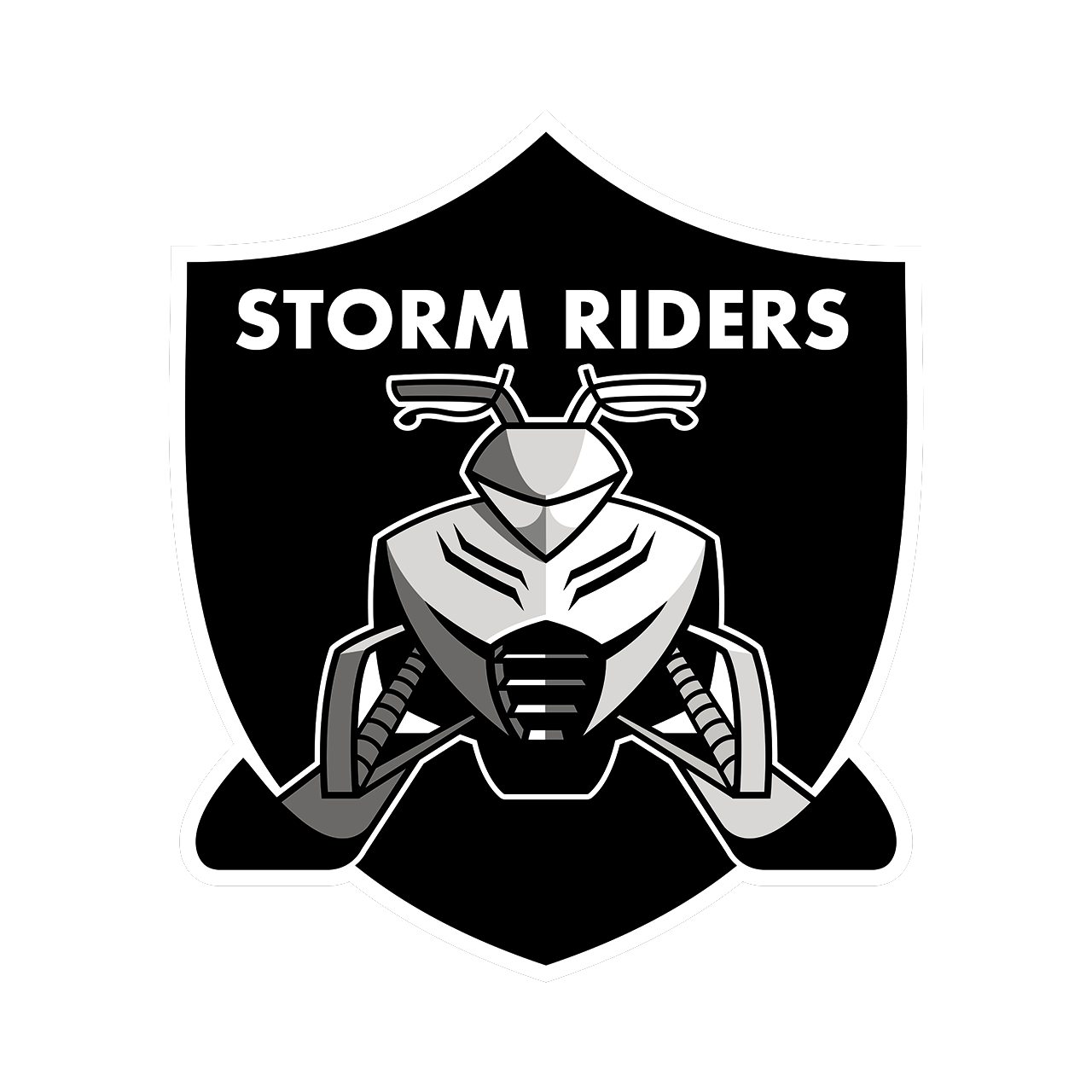 World Cup Storm Riders